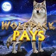 Wolfpack Plays